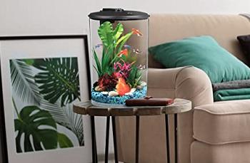 Koller AquaView Aquarium