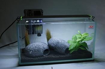 Mr. Aqua Personal Mini Aquarium