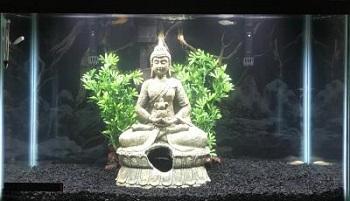 Penn-Plax Sitting Buddha Aquarium Decor
