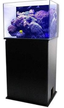 SC Aquariums Fish Tank