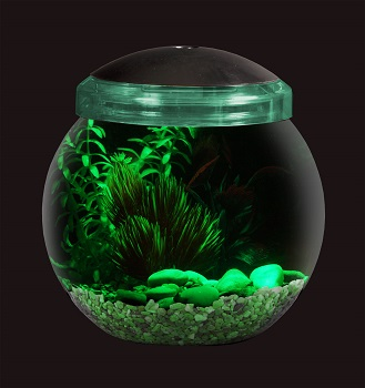 Skroutz Globe Fish Bowl