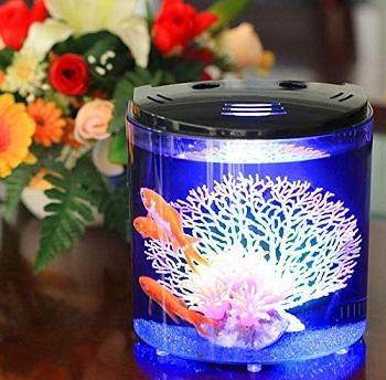 YCTECH Aquarium Starter Kit