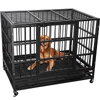Lemberi Heavy Duty Dog Crate