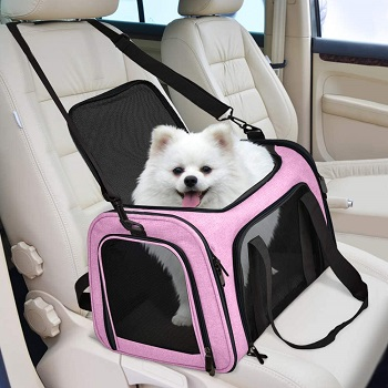 Henkelion Dog Carrier